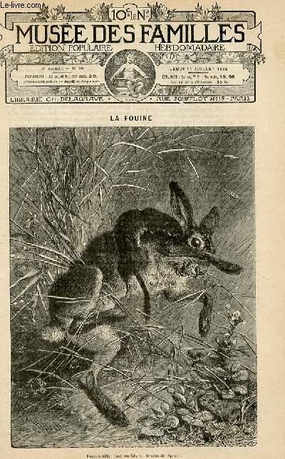 Le musée des familles - édition populaire hebdomadaire-  livraison n°28 - La fouine par Eugène Noël, petit article.