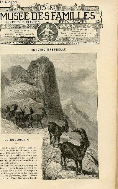 Le musée des familles - édition populaire hebdomadaire -  livraison n°48 - Histoire naturelle - le bouquetin par Maurice Maindron.