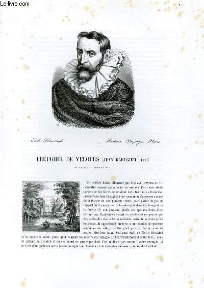 Biographie de Breughel de Velours