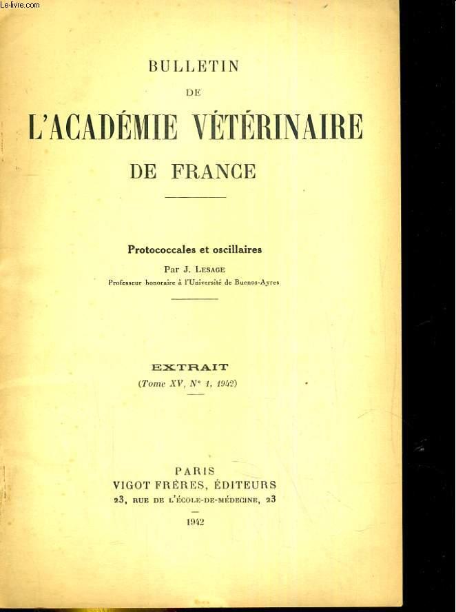 Bulletin de l'Académie vétérinaire de France Extrait, tome XV, N° 1 : Protoccales et oscillaires