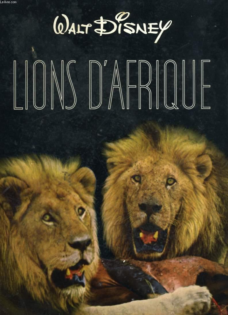 LIONS D'AFRQUE
