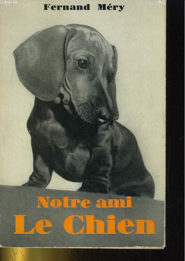 NOTRE AMI LE CHIEN (AVOIR UN CHIEN)