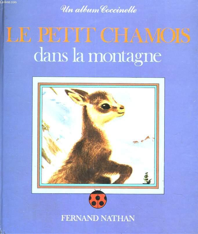 LE PETIT CHAMOIS DANS LA MONTAGNE