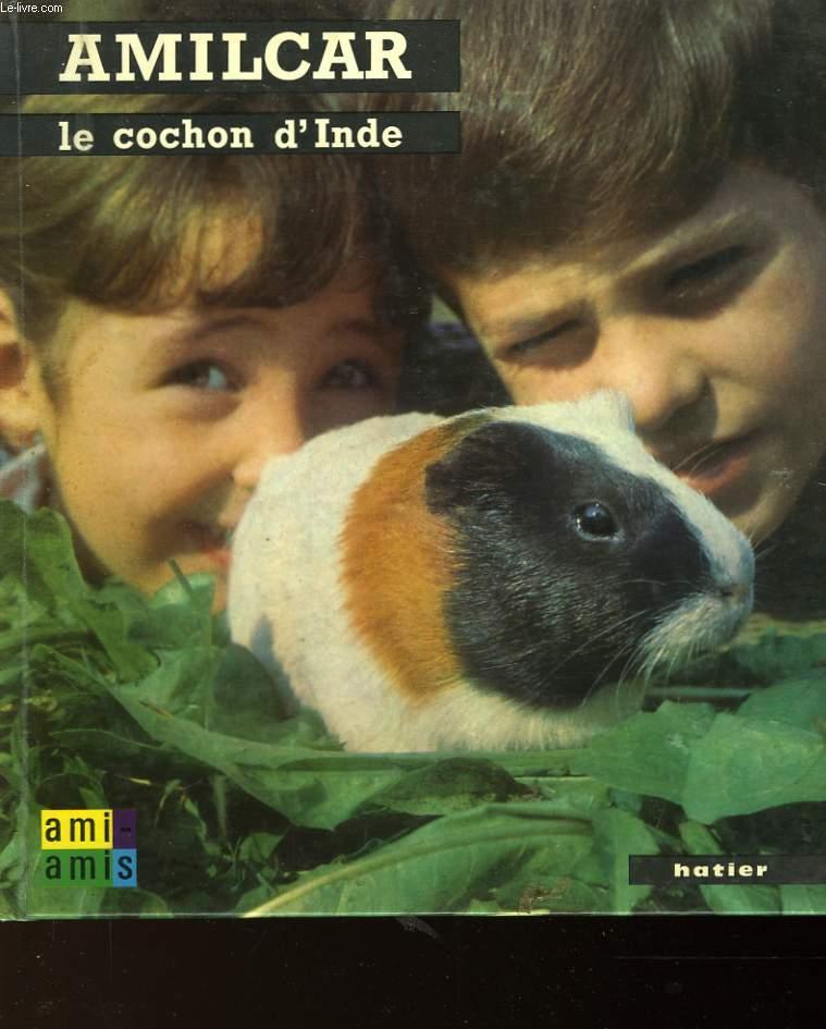 AMILCAR - LE COCHON D'INDE