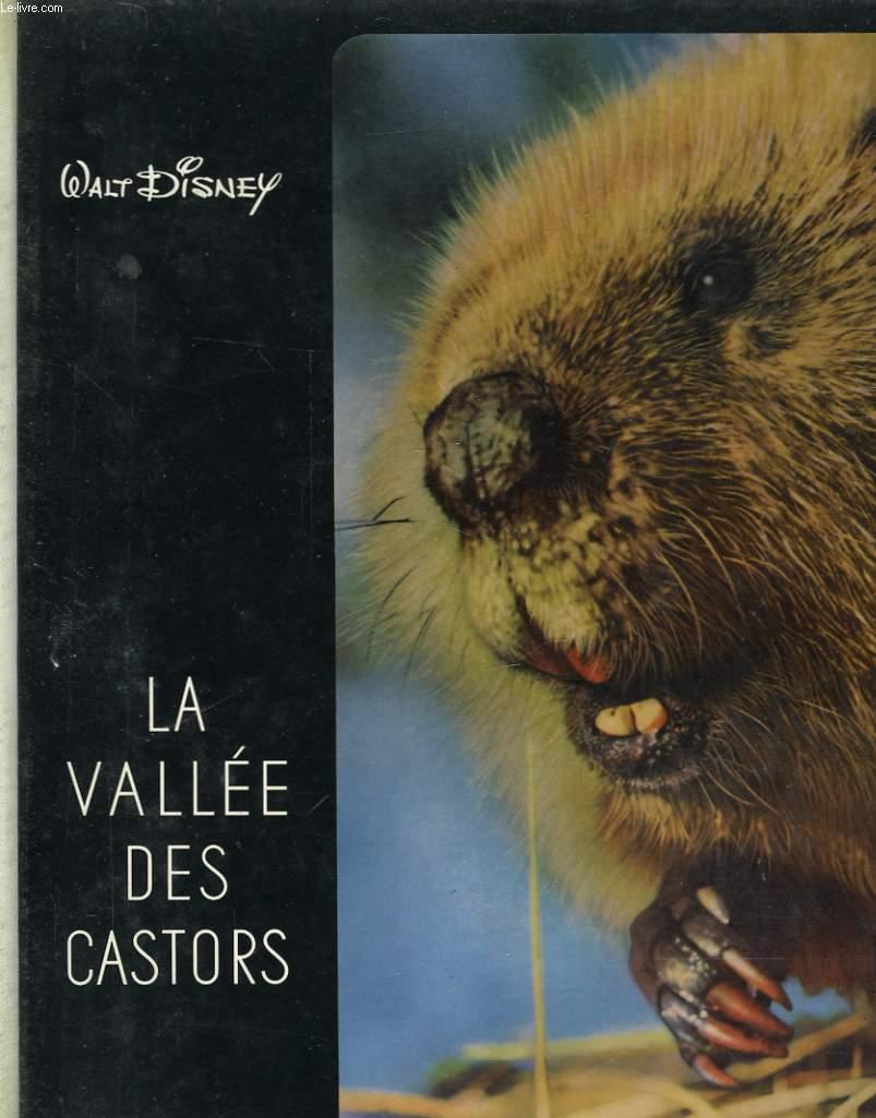 LA VALLEE DES CASTORS