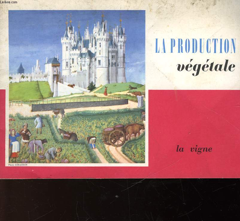 LA PRODUCTION VEGETALE - LA VIGNE