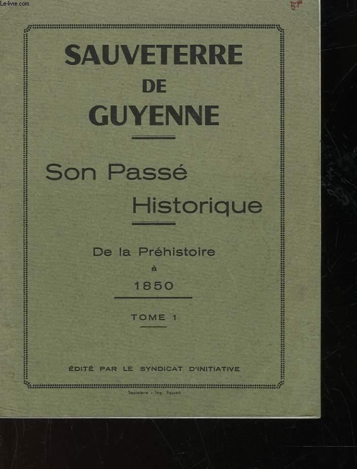 SAUVETERRE DE GYENNE - SON PASSE HISTORIQUE - DE LA PREHISTOIRE A 1850 - TOME 1