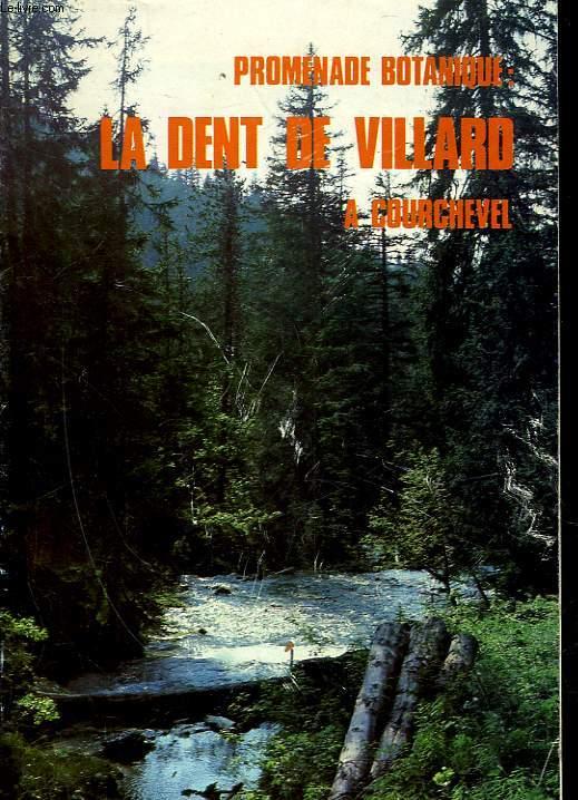 PROMENADE BOTANIQUE : LA DENT DE VILLARD A COURCHEVEL