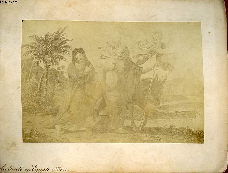 1 PHOTO/ TABLEAU ALBUMINEE : LA FEUILLE EN EGYPTE( FLEURI)