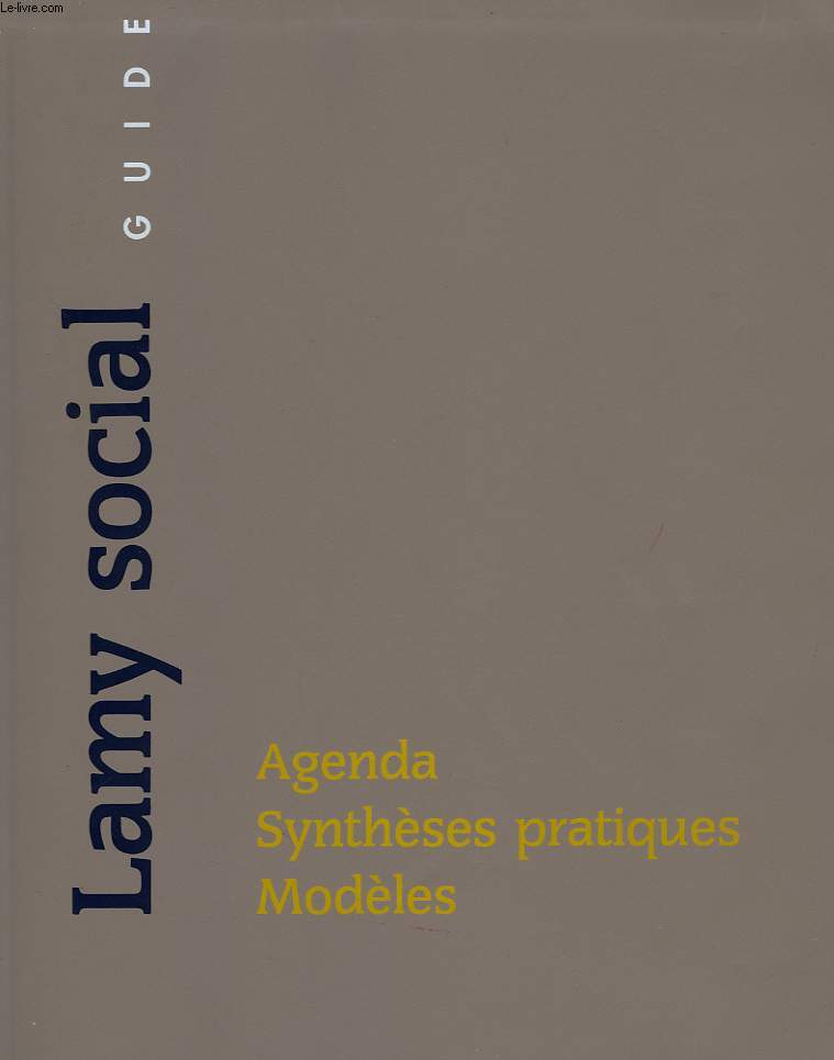 LAMY SOCIAL, GUIDE, AGENDA, SYNTHESES PRATIQUES, MODELES