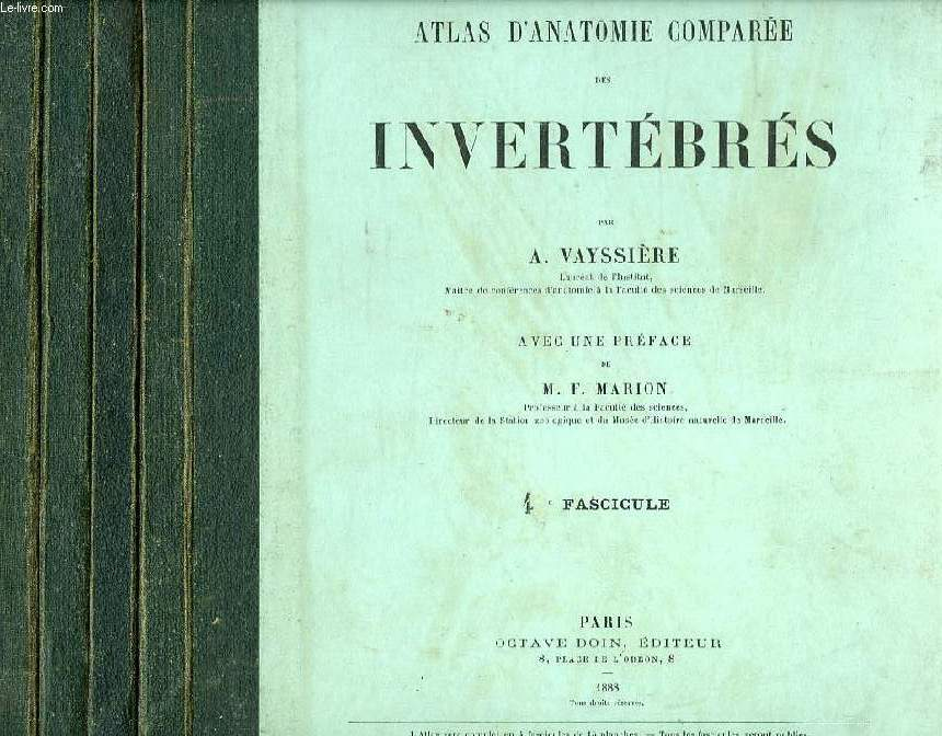 ATLAS D'ANATOMIE COMPAREE DES INVERTEBRES, 4 FASCICULES (COMPLET)