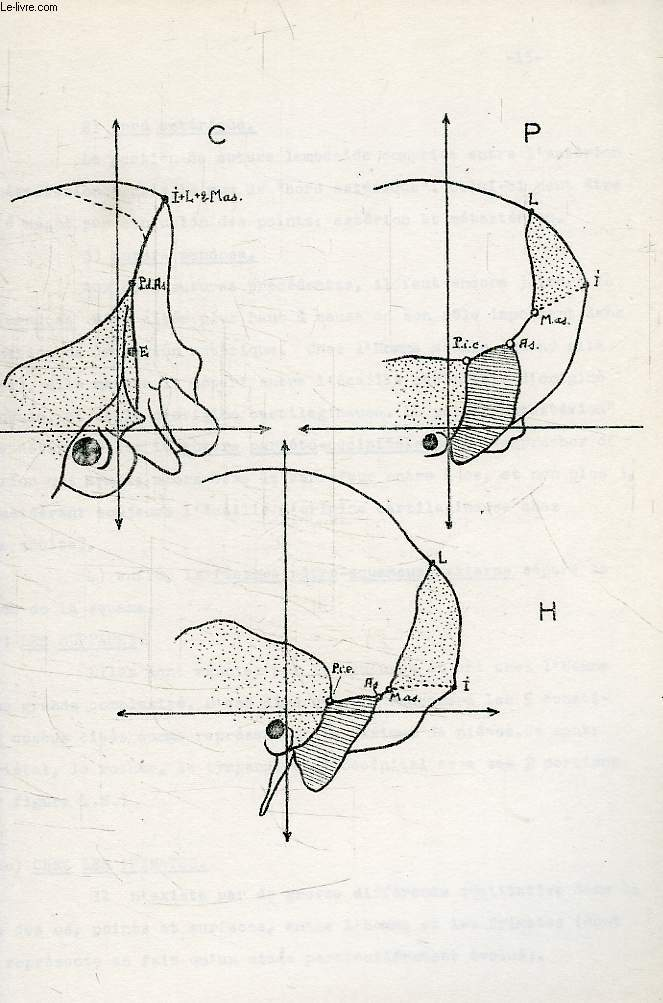 Developpement de la voute cranienne posterieure (faces laterales), phylogenese, ontogenese, these