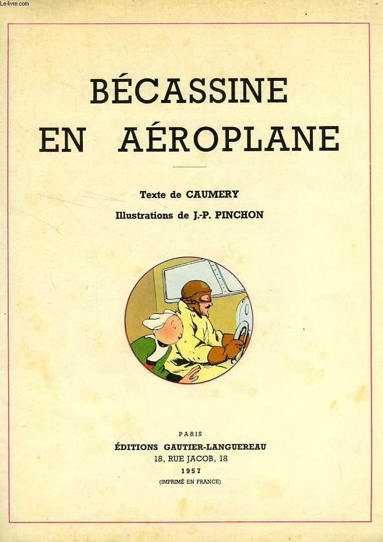 BECASSINE EN AEROPLANE