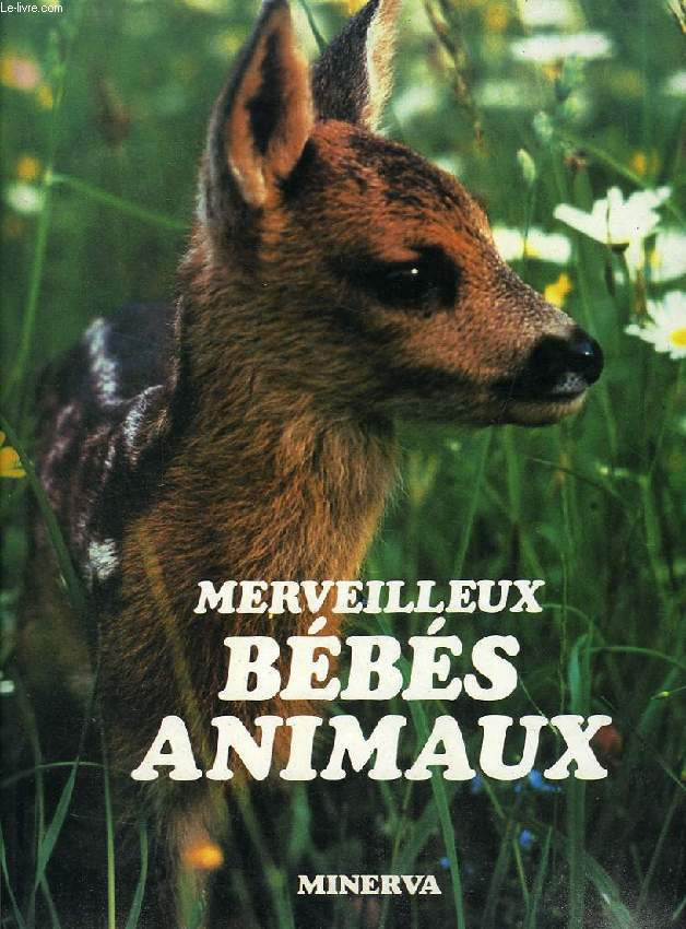 MERVEILLEUX BEBES ANIMAUX