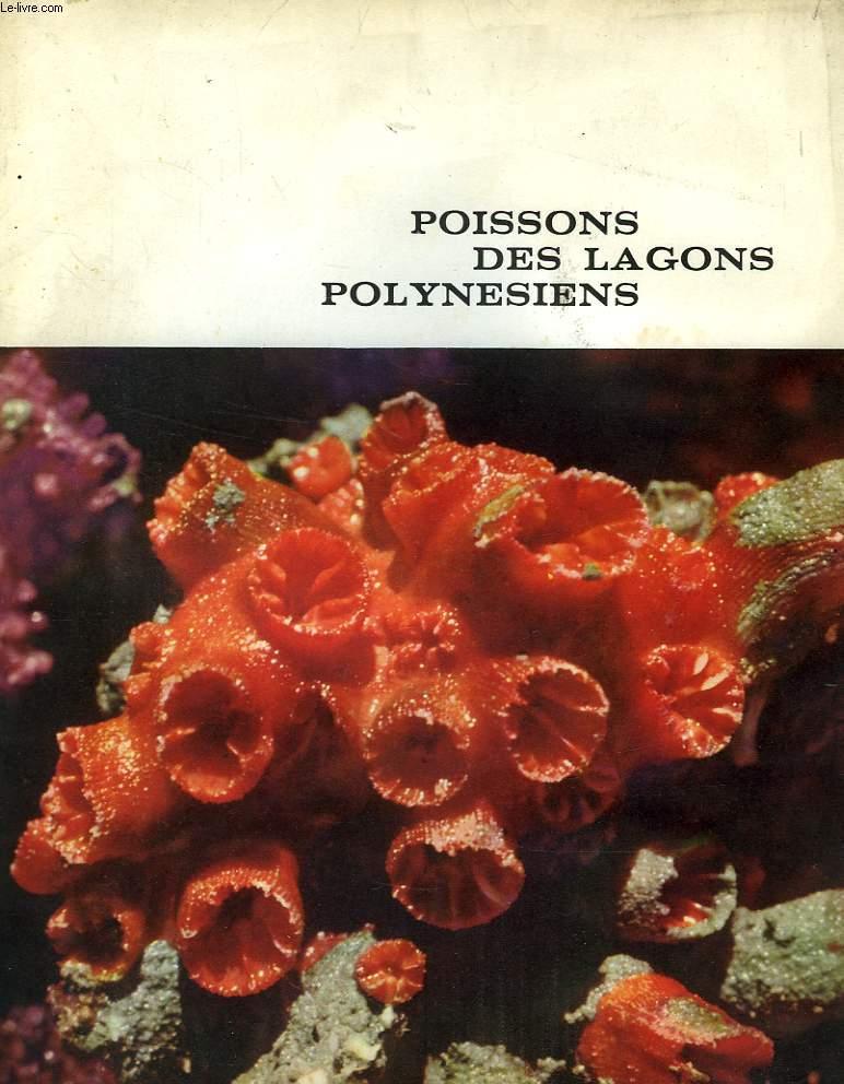 POISSONS DES LAGONS POLYNESIENS
