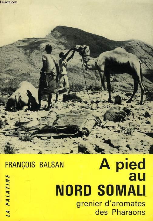 A PIED AU NORD SOMALI, GRENIER D'AROMATES DES PHARAONS