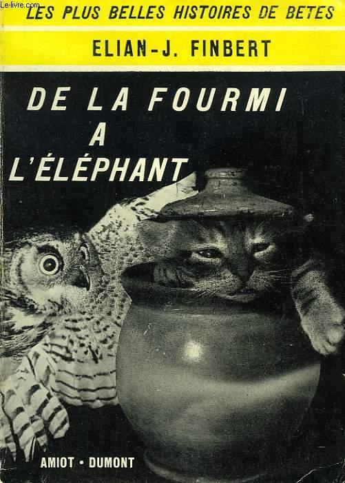 DE LA FOURMI A L'ELEPHANT
