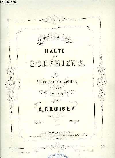 HALTE DE BOHEMIENS