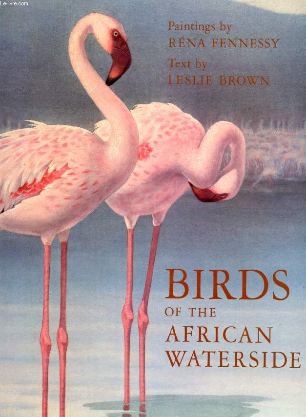 BIRDS OF THE AFRICAN WATERSIDE