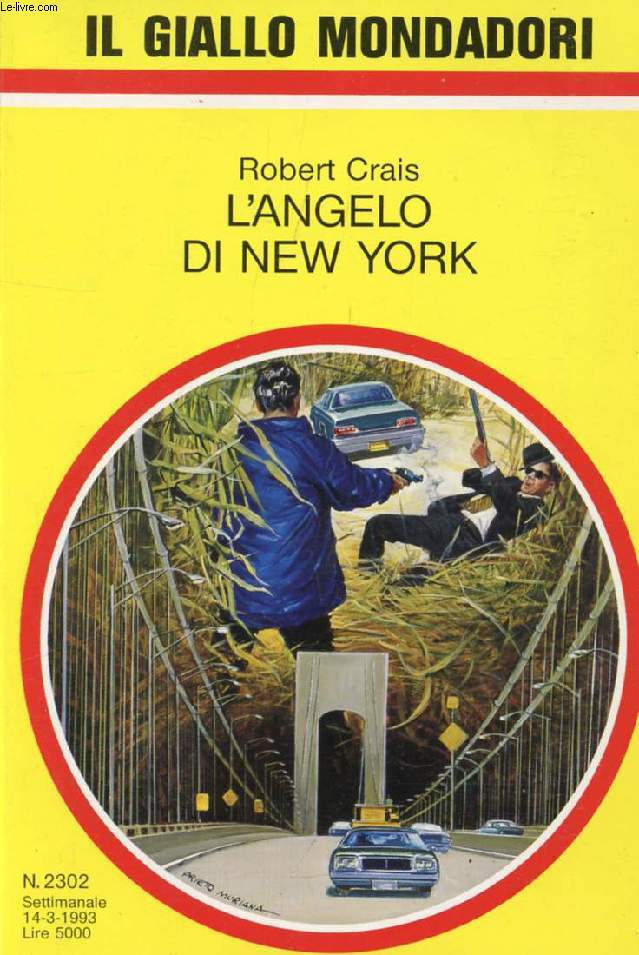 L'ANGELO DI NEW YORK