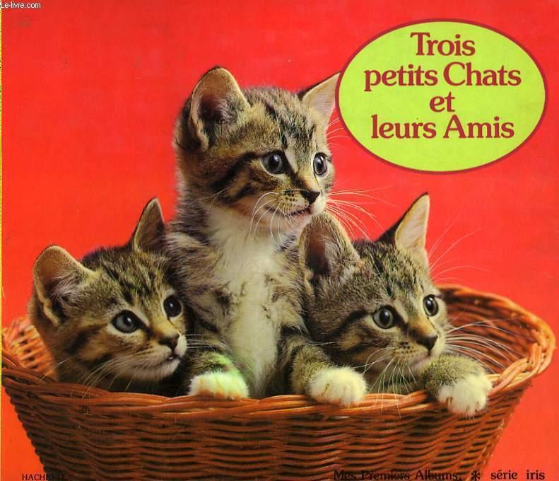 TROIS PETITS CHATS ET LEURS AMIS