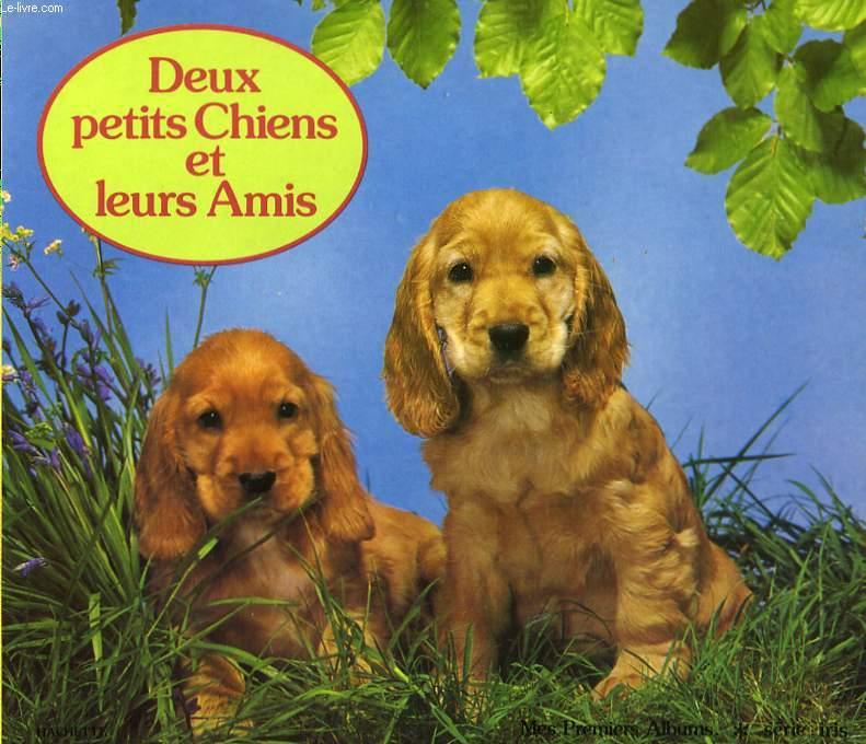 DEUX PETITS CHIENS ET LEURS AMIS