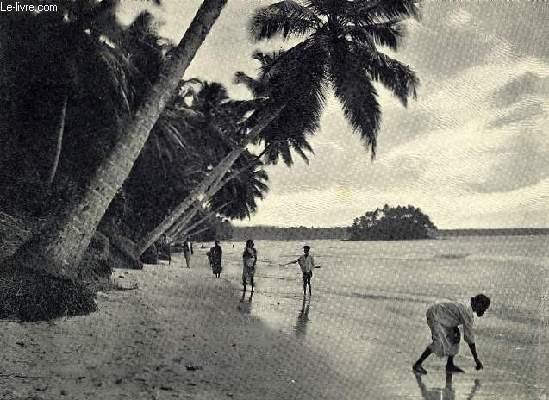 Ouvrage sur l'Île de Ceylan.
