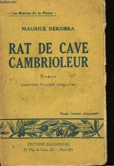 Rat de cave cambrioleur.