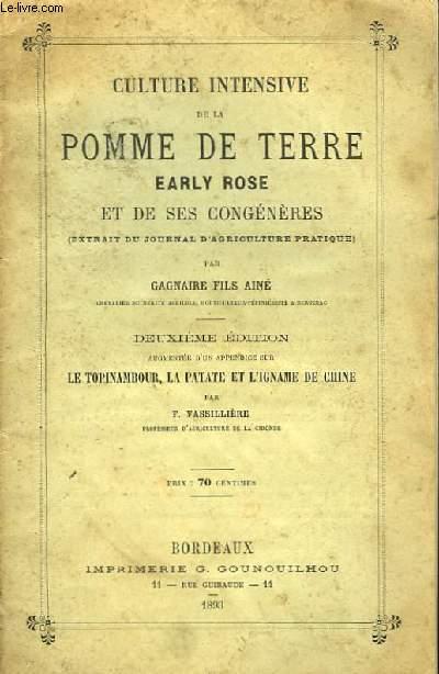 Culture intensive de la Pomme de Terre, Early Rose, et de ses congénères.