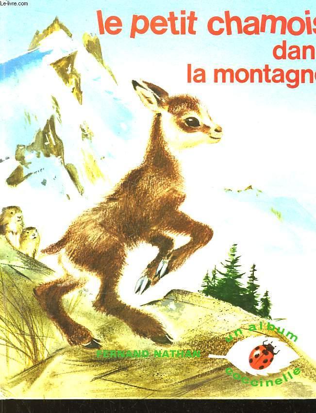 Le petit chamois dans la montagne.