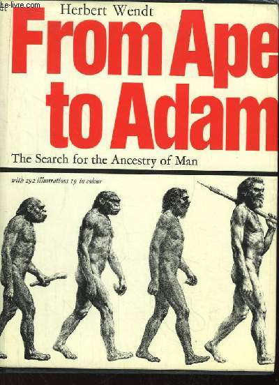 From Ape to Adam. The search for the ancestry of man