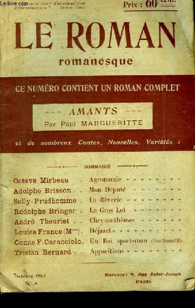 Le Roman romanesque n°6 :