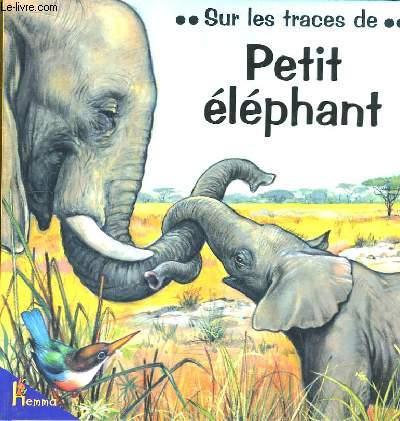 Sur les traces de ... Petit éléphant.