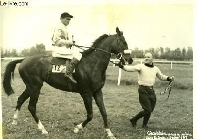 Photographie originale du cheval Chatelain après sa victoire dans la Coupe d'Argent 1951