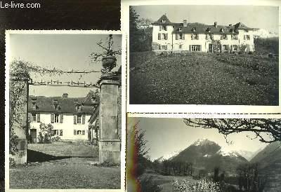 Lot de 10 photographies originales de Prechac près Argelès Gezost. Domaine appartenant aux Consorts Castillon du Perron.