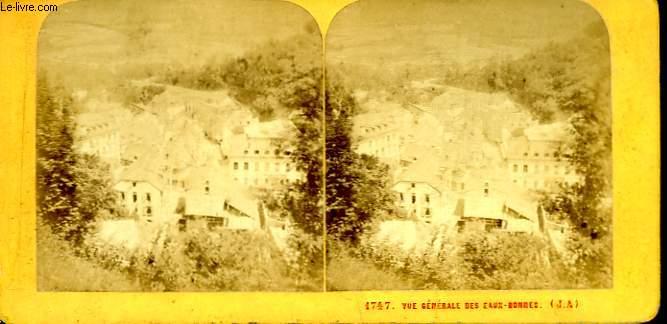 1 planche composée de 2 photographies (identiques) anciennes albuminées : Vue générale des Eaux-Bonnes (N°1747)