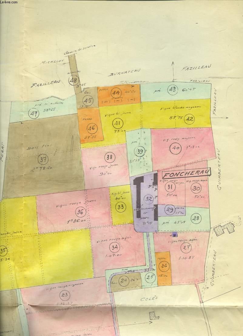 Plan du Cadastre de Montussan - Thibaut, Commune d'Yvrac, Cap de Gueille.