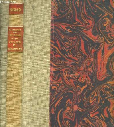 Journal d'un attaché d'ambassade 1916 - 1917