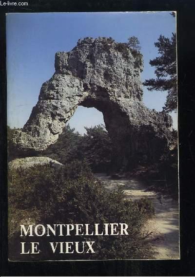 Montpellier-le-Vieux. Lo Clapas Viel