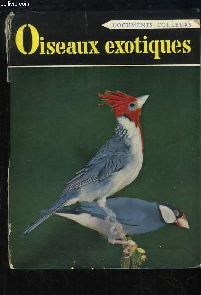 Oiseaux Exotiques de Cage.