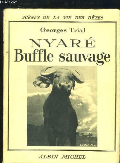 Nyaré, Buffle sauvage.