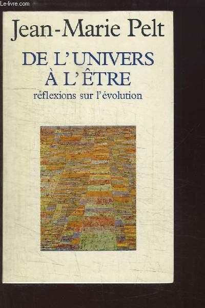 De l'Univers à l'Être. Réflexions sur l'évolution.