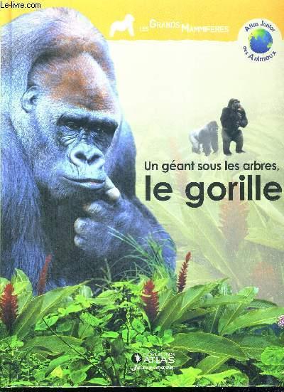 Un Geant Sous Les Arbres Le Gorille Atlas Junior Des Animaux Les Grands Mammiferes
