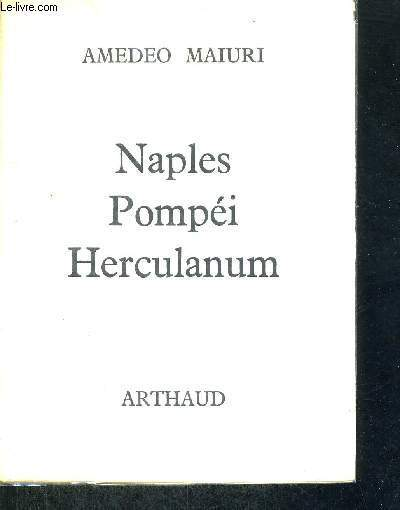 NAPLES - POMPEI - HERCULANUM - PROMENADE EN CAMPANIE