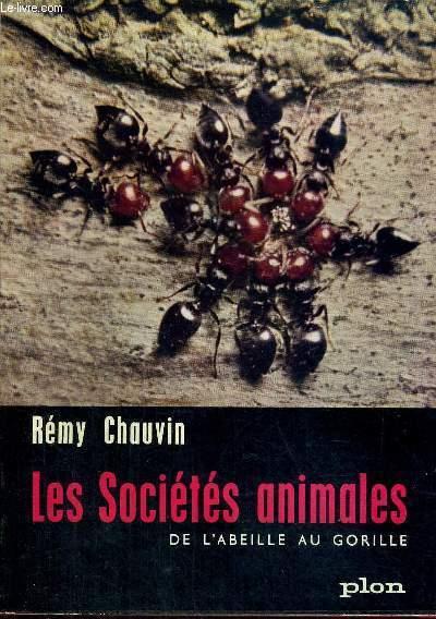 LES SOCIETES ANIMALES DE L'ABEILLE AU GORILLE