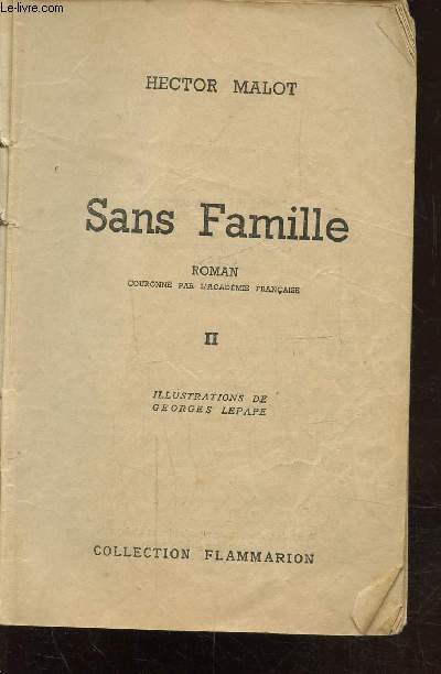 SANS FAMILLE - TOME 2