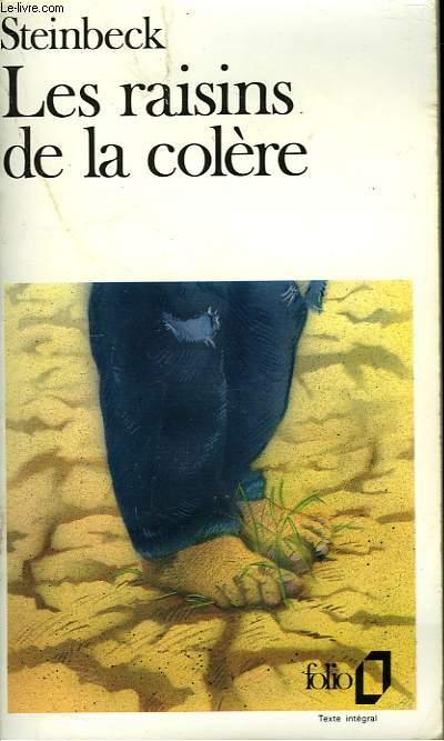 LES RAISONS DE LA COLERE