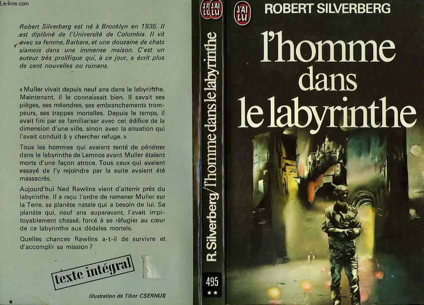 L'HOMME DANS LE LABYRINTHE - THE MAN IN THE MAZE