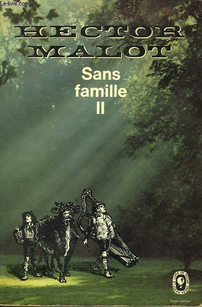 SANS FAMILLE TOME 2