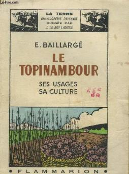 Le topinambour ses usages sa culture